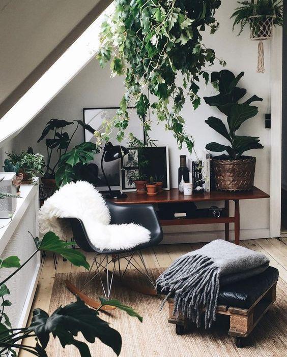 Scandinavian_Living_Plants